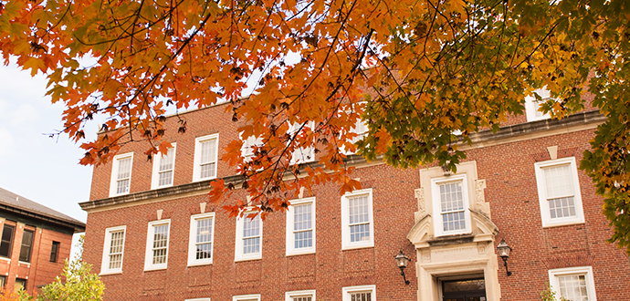 Fall leaves on a tree in front of Hovey Hall.